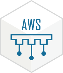 AWS Icon for Website